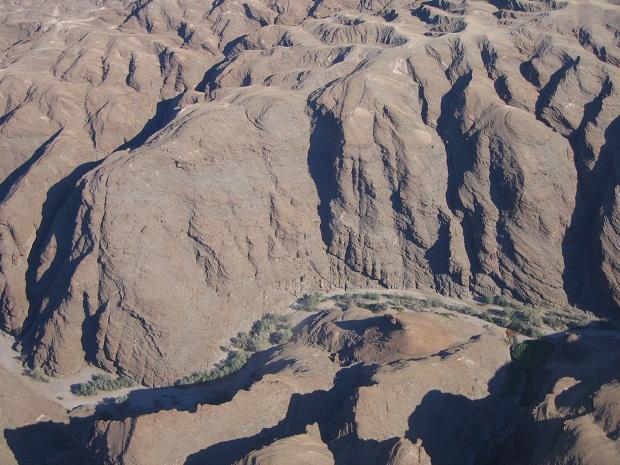 Bäume im Kuiseb Canyon