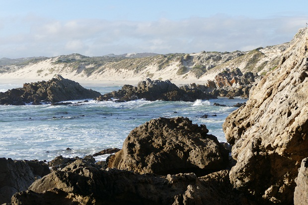 Klippen und Strand von De Kelders aus gesehen