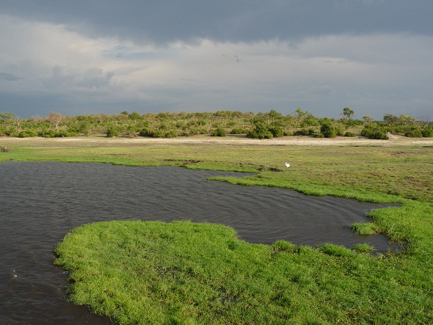 Regen in der Green Season in Botswana