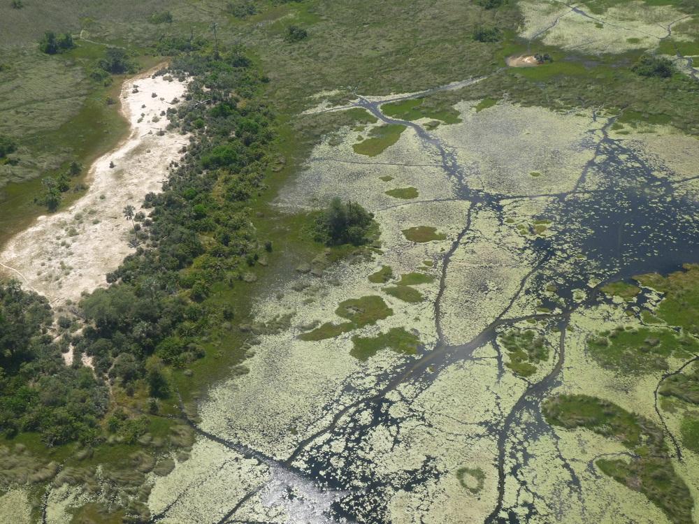 Flug mit dem Kleinflugzeug über das Okavango Delta
