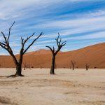 afrika-namibia-freistilchaot-04
