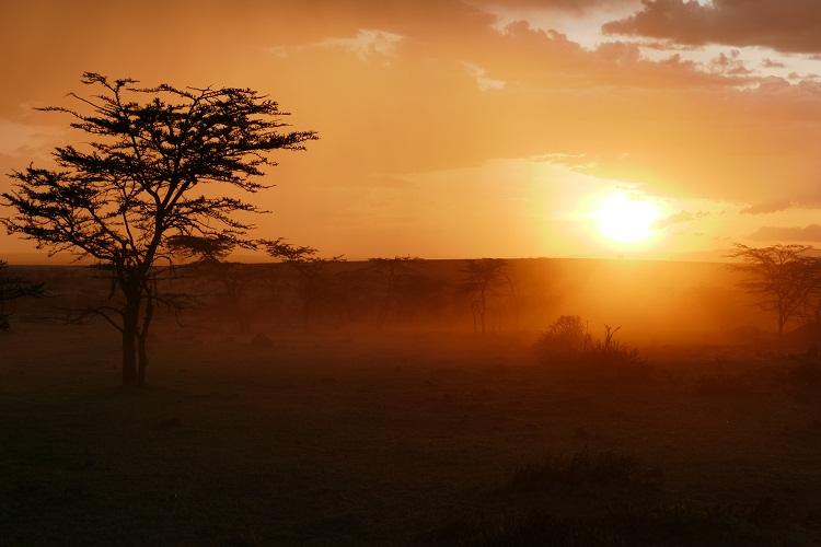 Sonnenuntergang in der Masai Mara