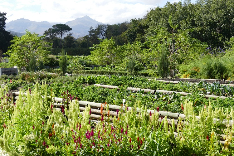 Gärten von Boschendal