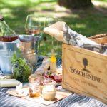 Picknick in einem Weingut in Südafrika