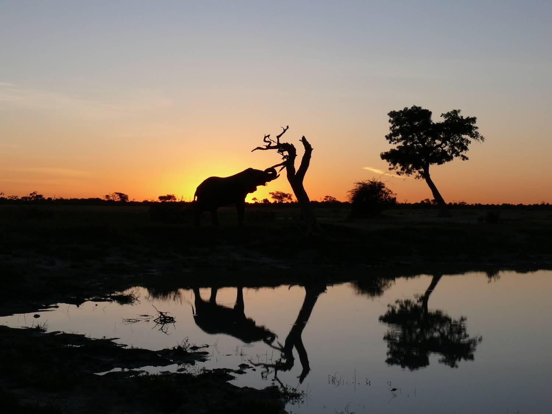 Einzigartige Landschaften in Botswana