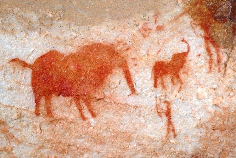 Steinzeitmalereien Bushmans Kloof