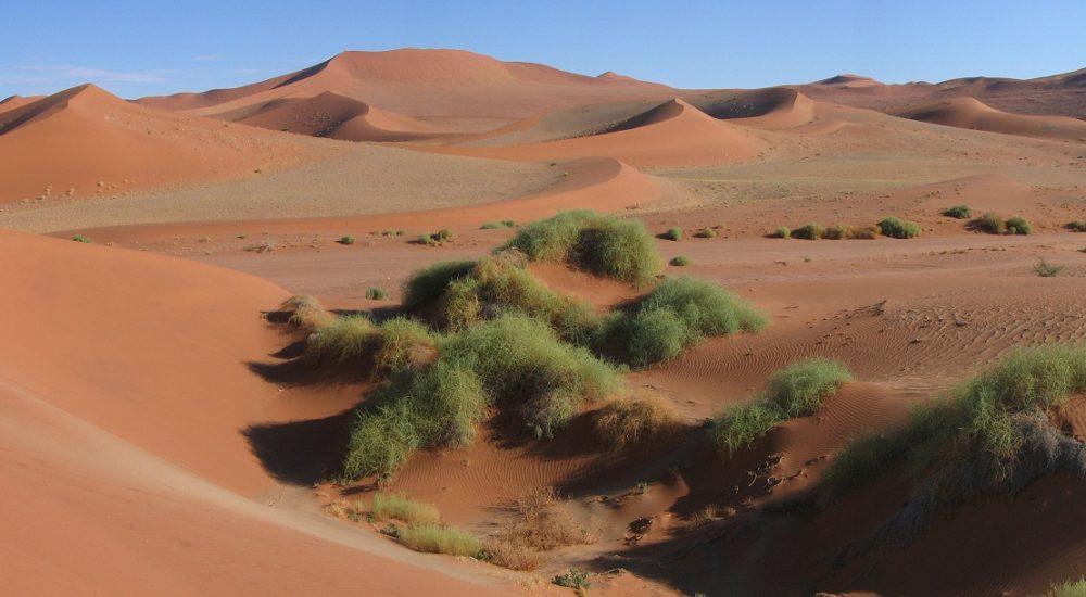 Rundreise Namibia mit Genuss Touren