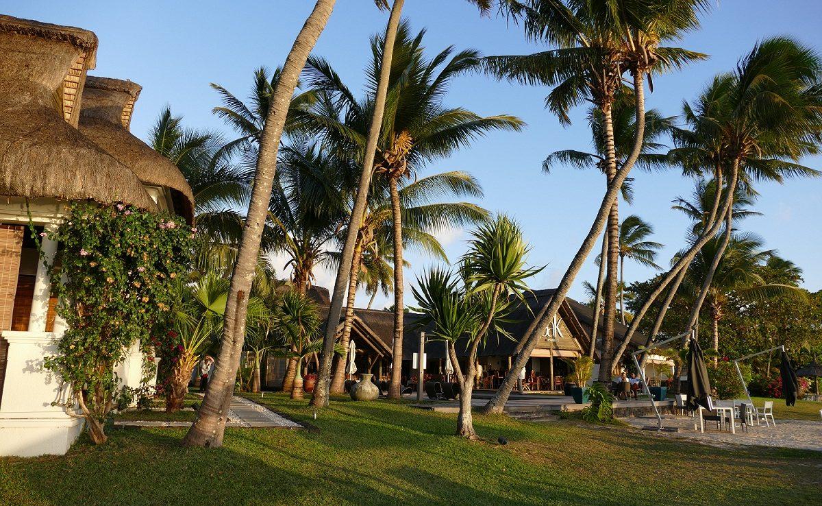 Palmengarten des kleinen Boutiquehotels