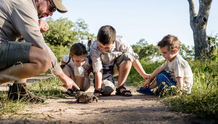 Familiensafari in Südafrika
