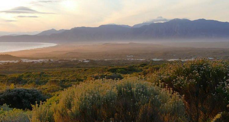 DIe schönsten Strände der Kapprovinz in Südafrika