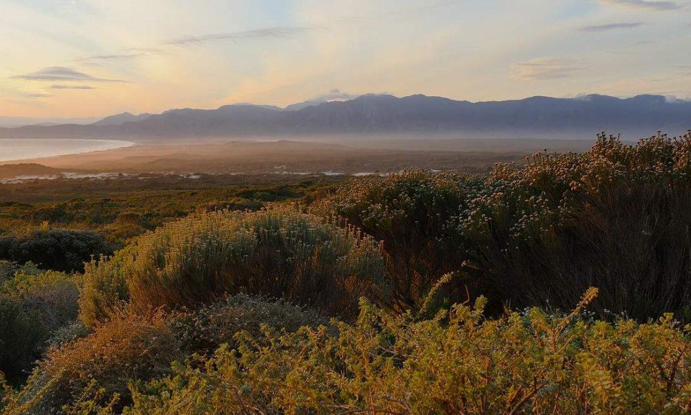 Erkunden Sie die Garden Route mit Südafrika Spezialist Genuss Touren