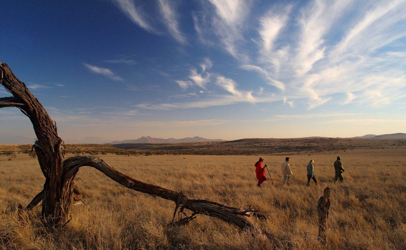 Bush Walk vom Lewa Safari Camp aus
