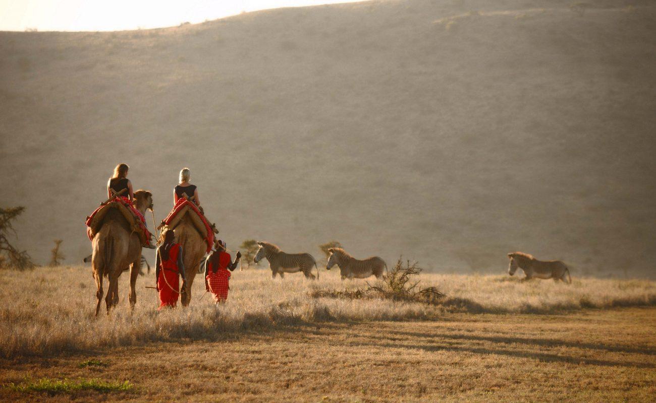 Kamel Trekking in der privaten Konzession