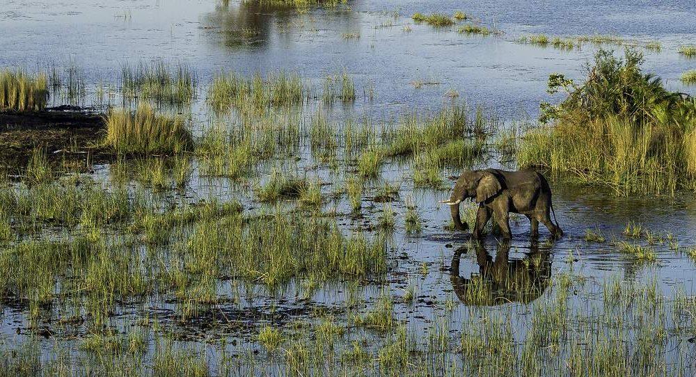 Reisen Sie in das Okavango Delta in Botswana mit Afrika Spezialist Genuss Touren