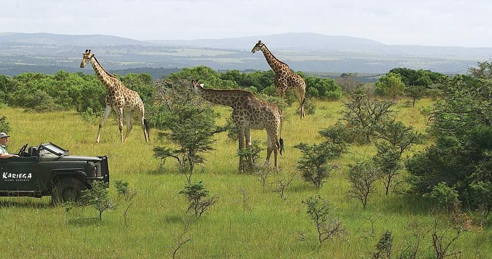 Ostkap - Eastern Cape mit Genuss Touren erkunden