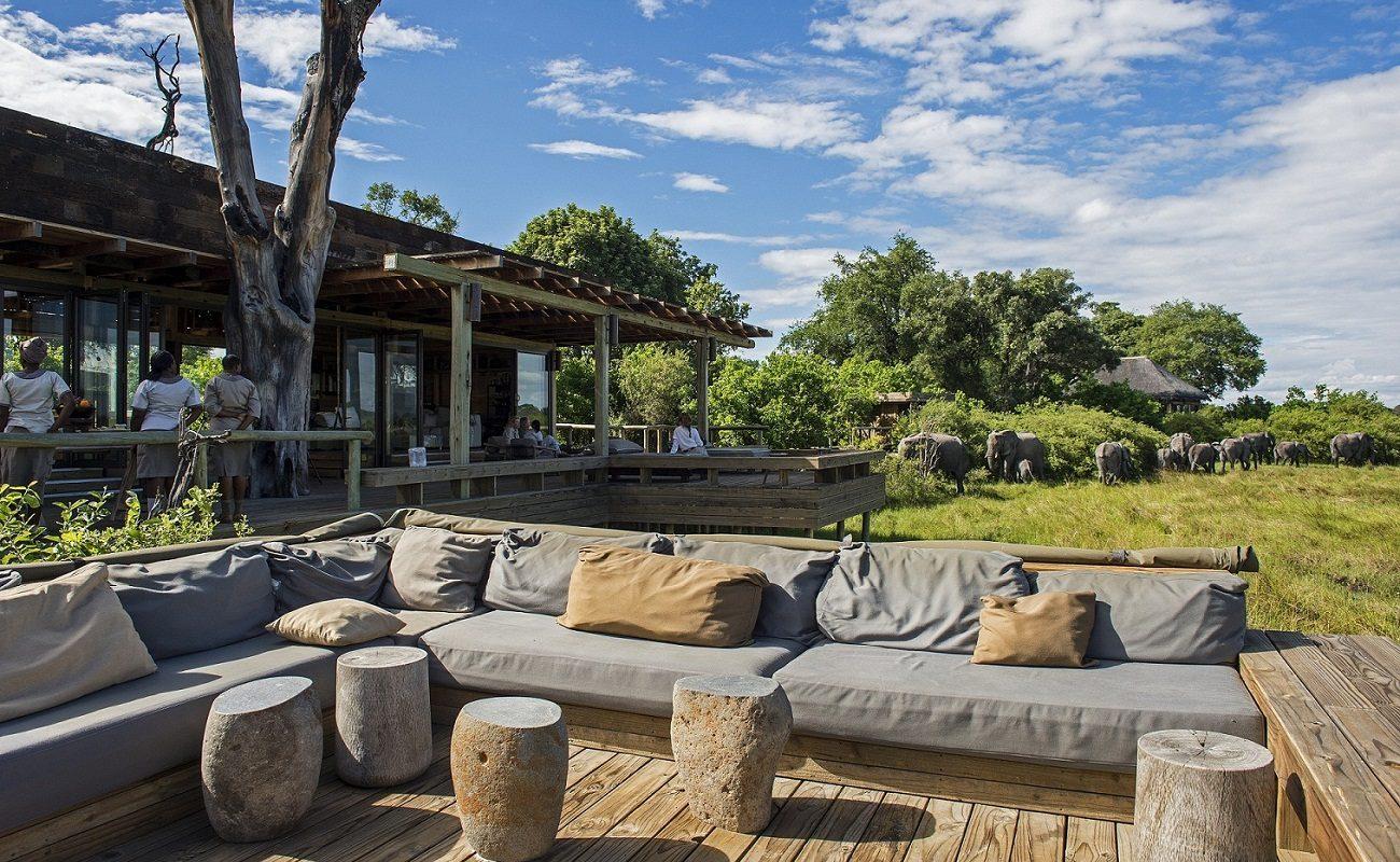Elefanten kommen zum Haupthaus des Luxuscamps von Wilderness Safaris