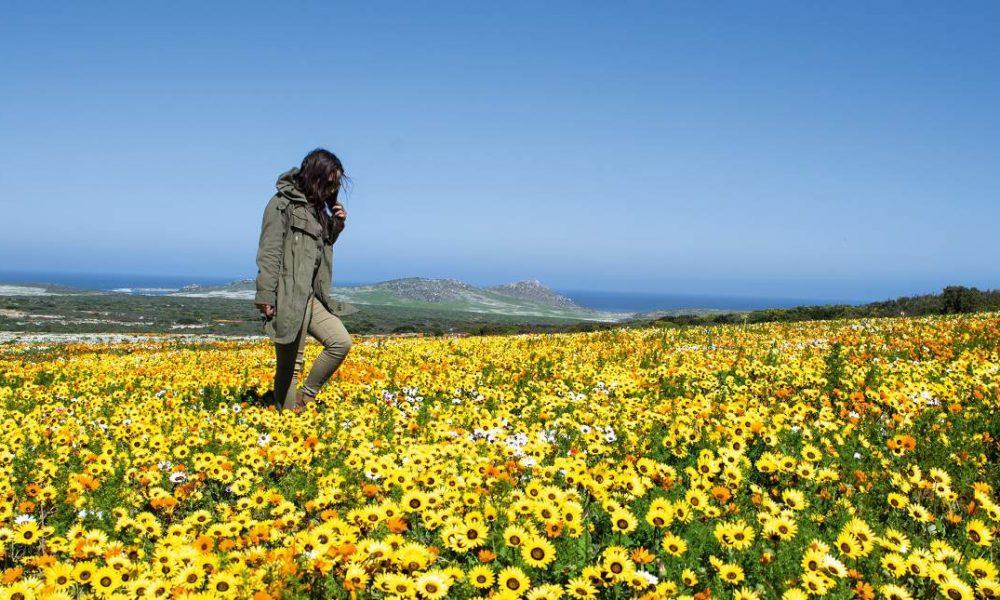 Westküste in Südafrika mit Genuss Touren erkunden
