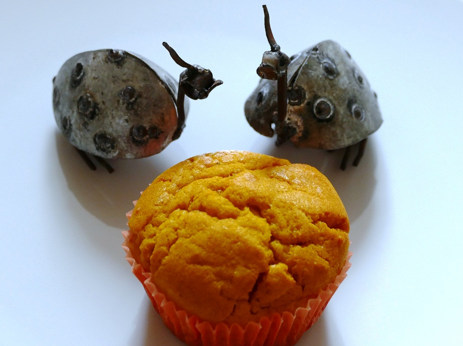 Süße Butternut-Muffins