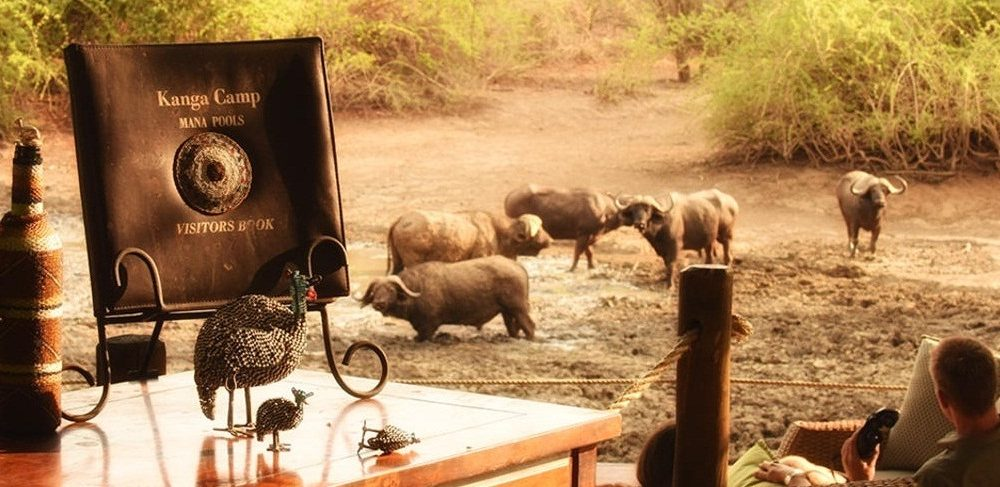 Kanga Camp Simbabwe Mana Pools