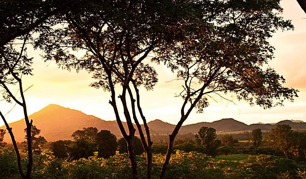 Musangano Lodge Eastern Highlands Zimbabwe