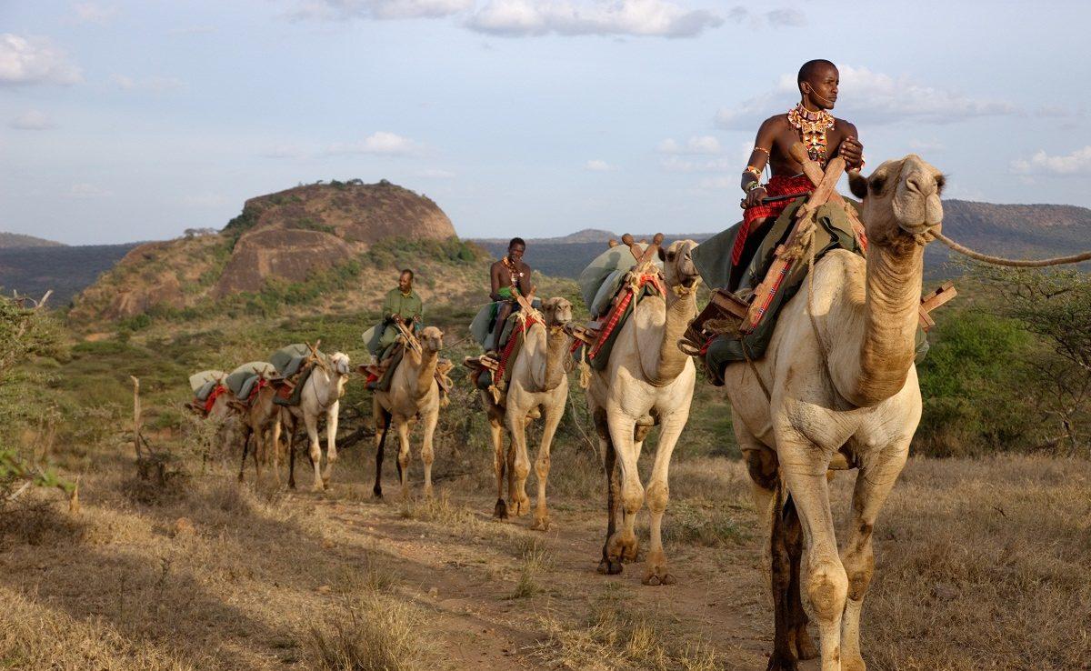 Kamelsafari bei Ol Malo