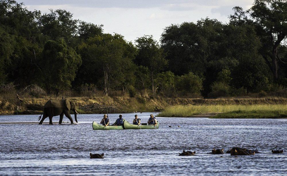 Kanu Safari in Mana Pools