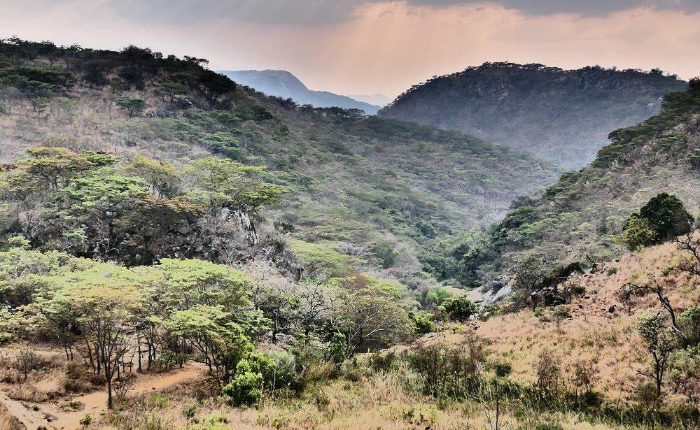 Nyanga Nationalpark