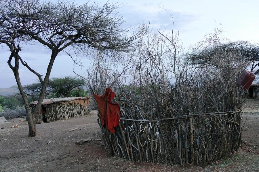 Samburu Dorf auf dem Laikipia Plateau
