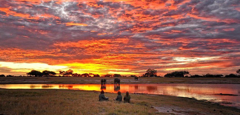 Somalisa Camp Hwange Nationalpark Simbabwe