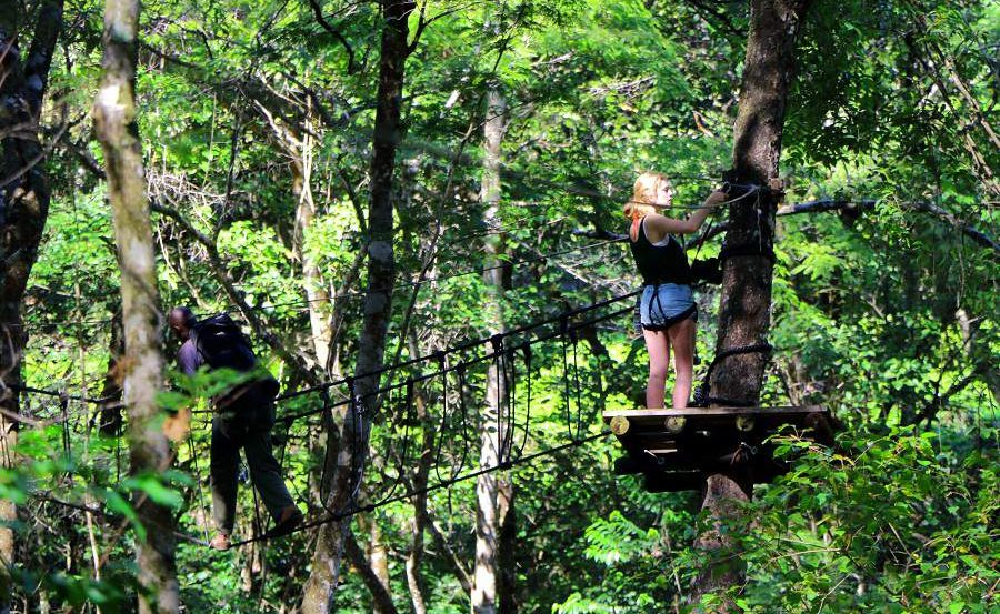 Tree Canopy Tour in den Eastern Highlands