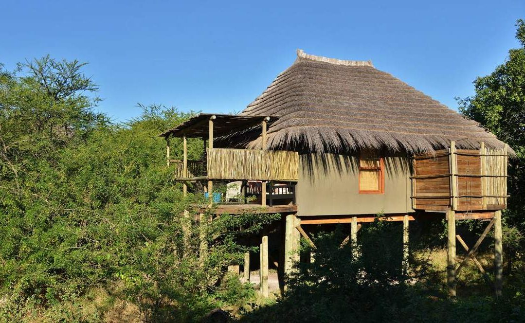 Treetop Chalet Bakwena Lodge