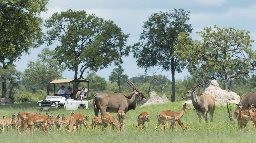 Davisons Camp Wilderness Safari Hwange Nationalpark