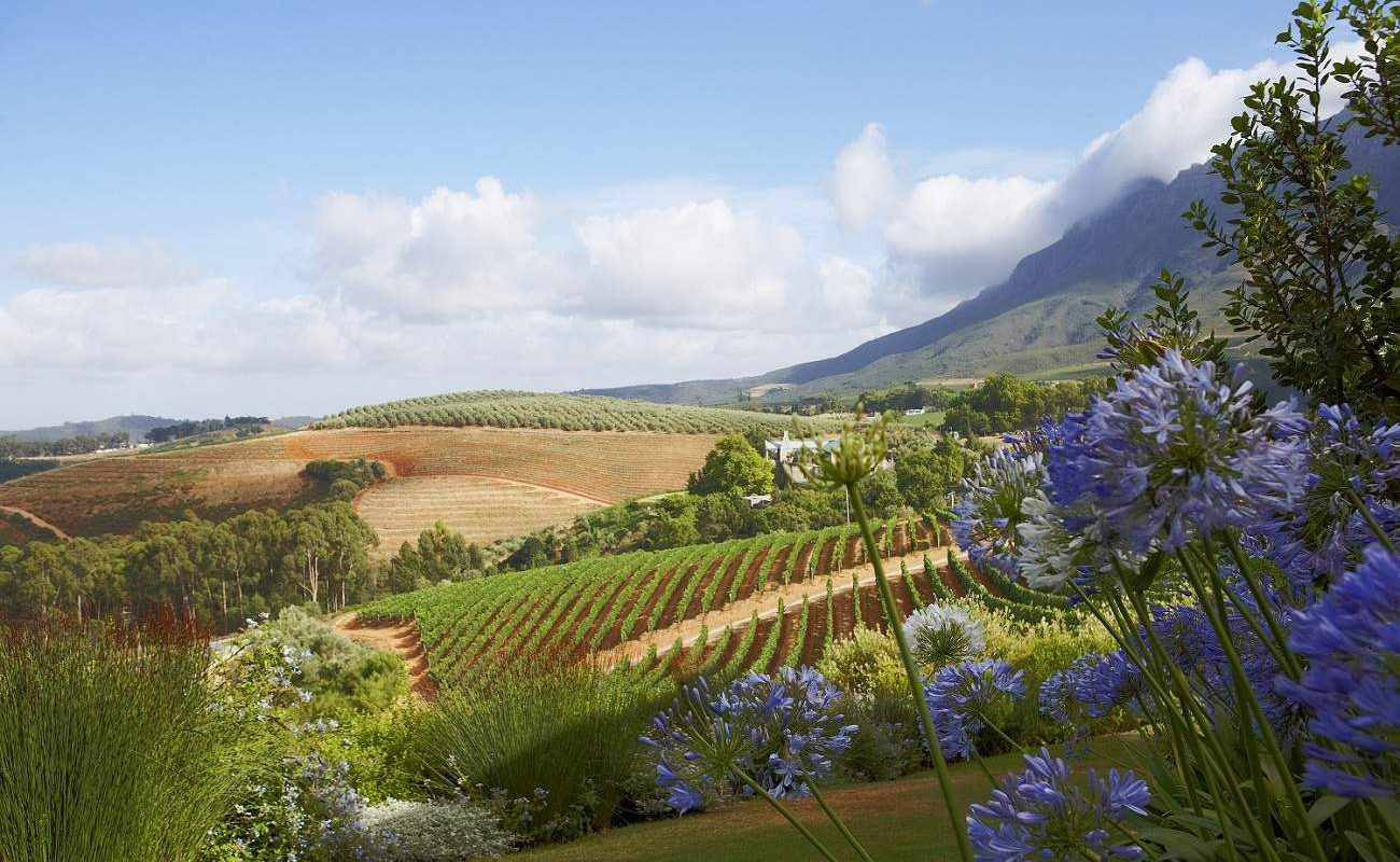 Blick in die Winelands vom Delaire Graff Estate