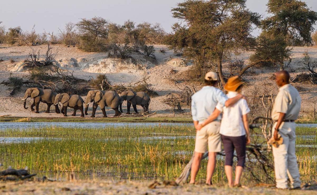 Große Botswana Safari Leroo La Tau Pirschwanderung