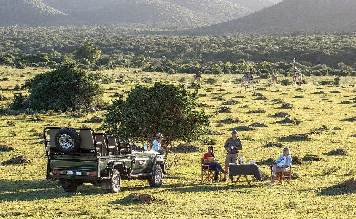 Pirschfahrt im Kariega Game Reserve