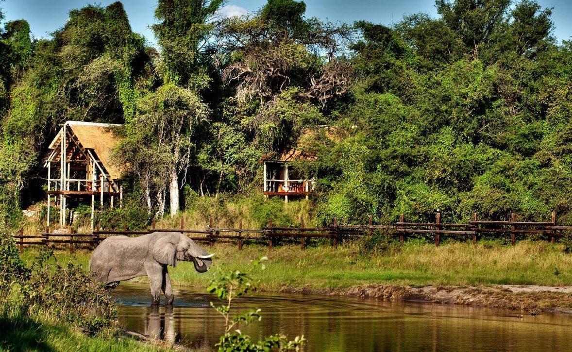 Die Luxuszelte der Desert & Delta Lodge stehen gut geschützt am Savute Chanel
