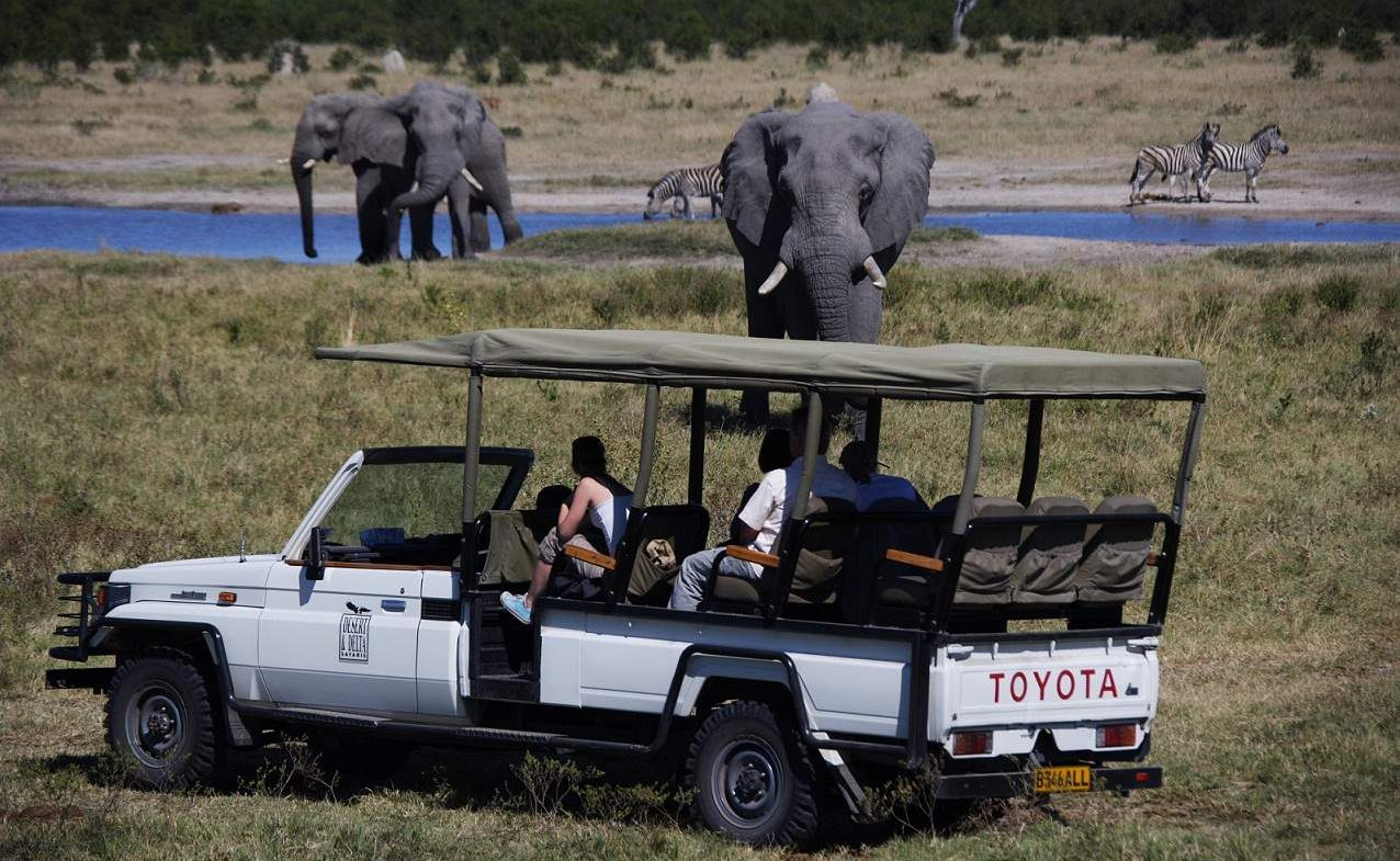 Gehen Sie mit Genuss Touren auf Safari in Botswana