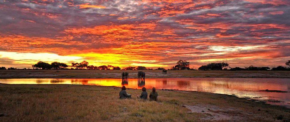 Rundreise Simbabwe Safari pur