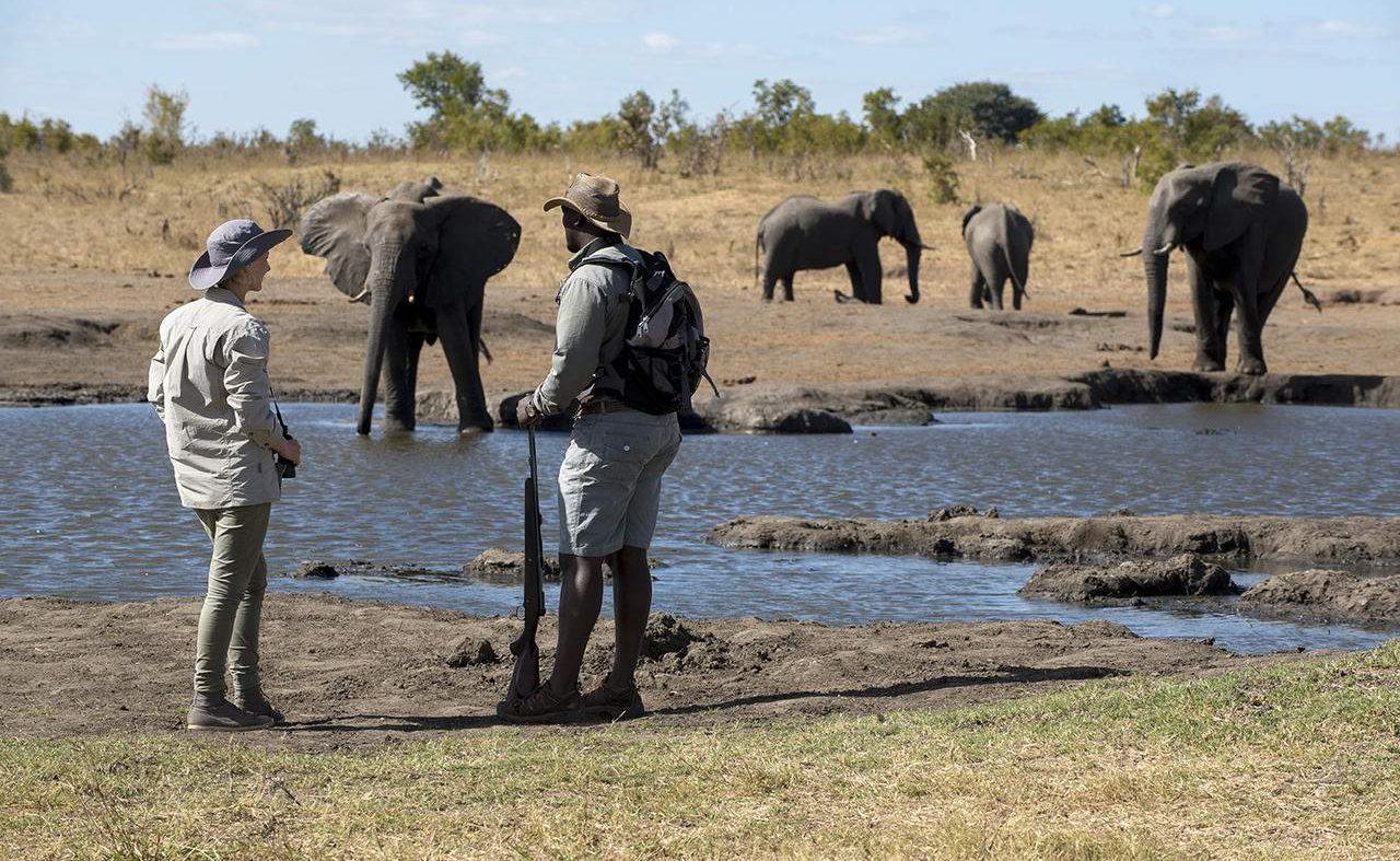 Wlking Safari im Hwange Nationalapark