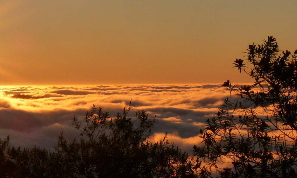 Buchen Sie Ihre Rundreise oder Ihren Badeurlaub auf La Réunion mit Genuss Touren