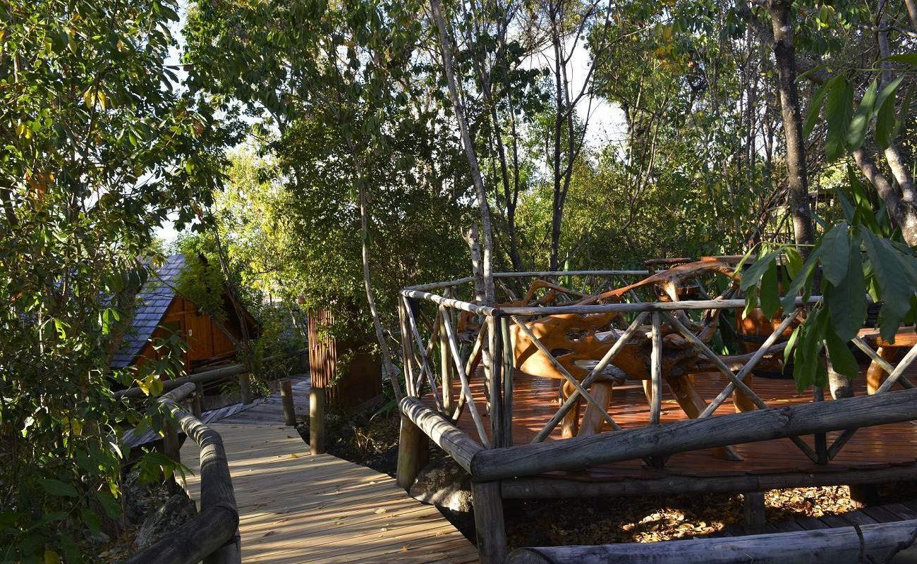 Holstege führen durch den tropischen Garten