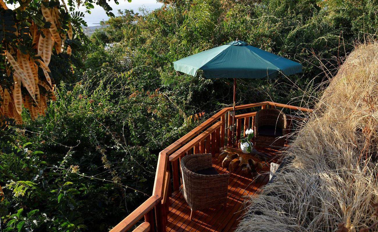 Terrasse inmitten der dichten Vegetation von La Réunion
