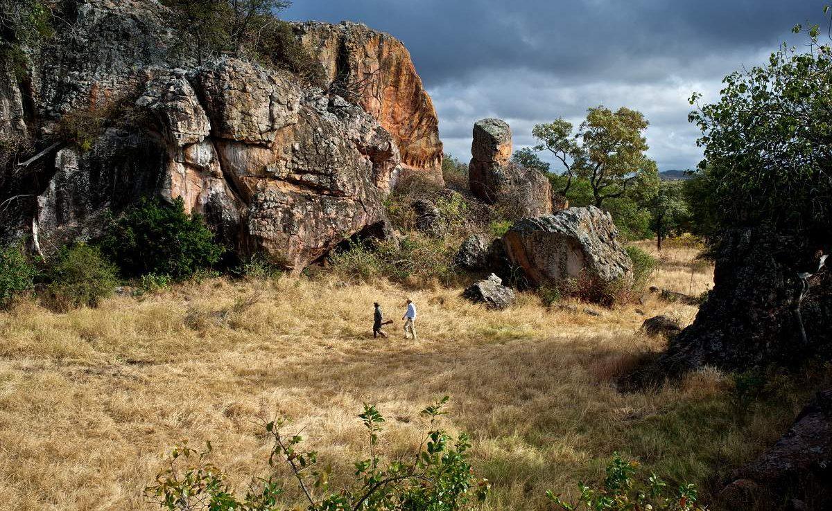 Bushwanderung im Malilangwe Wildlife Reserve