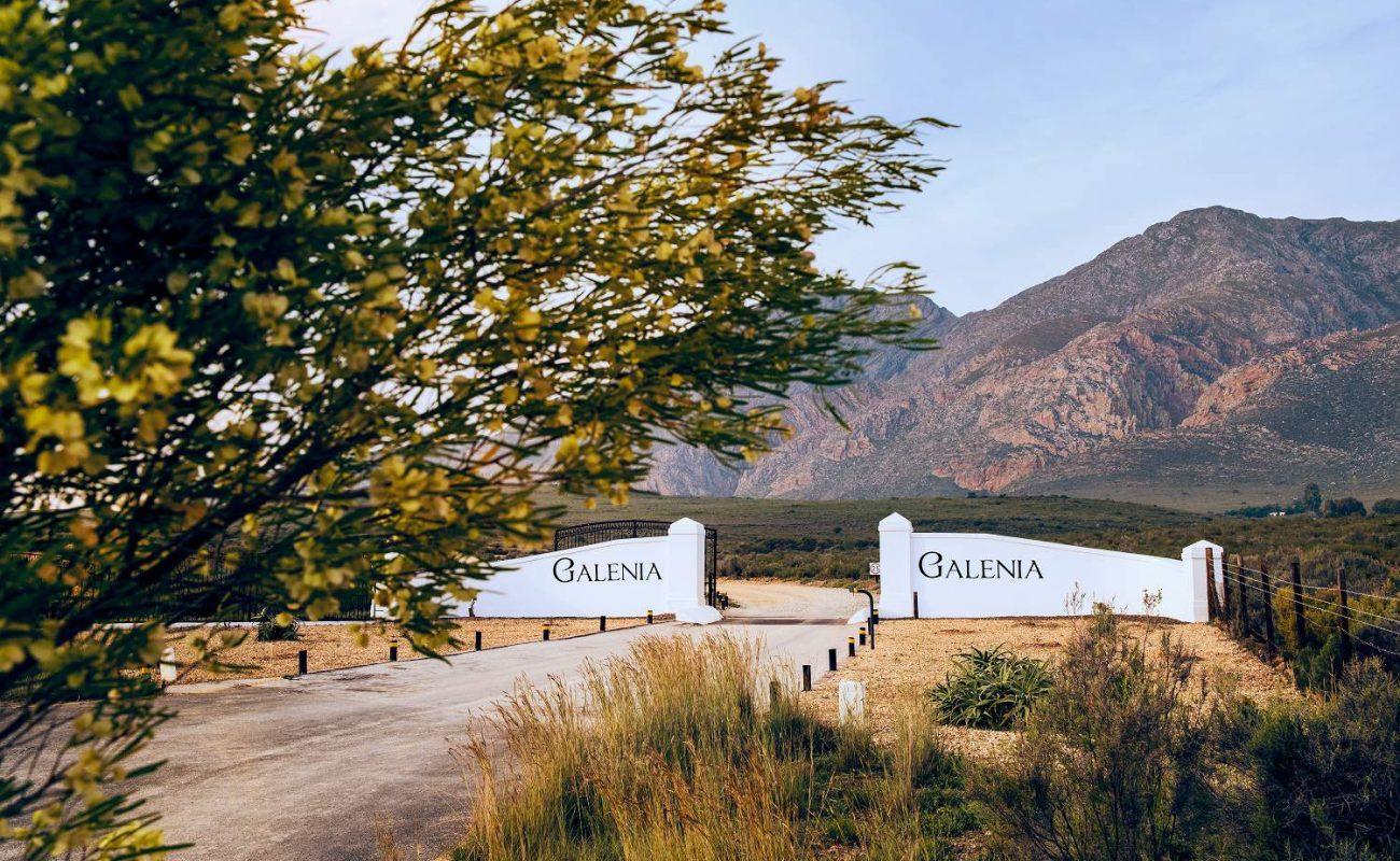 Einfahrt zu Galenia nahe Montagu