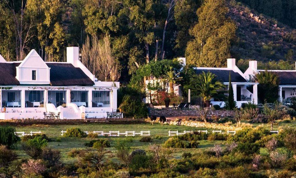 Galenia Estate in der Kleinen Karoo bei Montagu