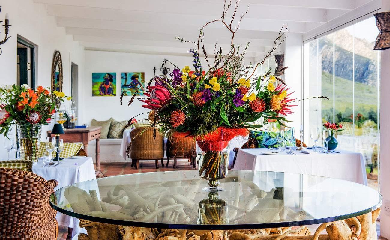 Die opulenten Blumen der Kleinen Karoo