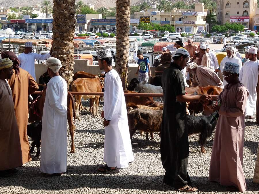Verkauf auf dem Viehmarkt in Nizwa