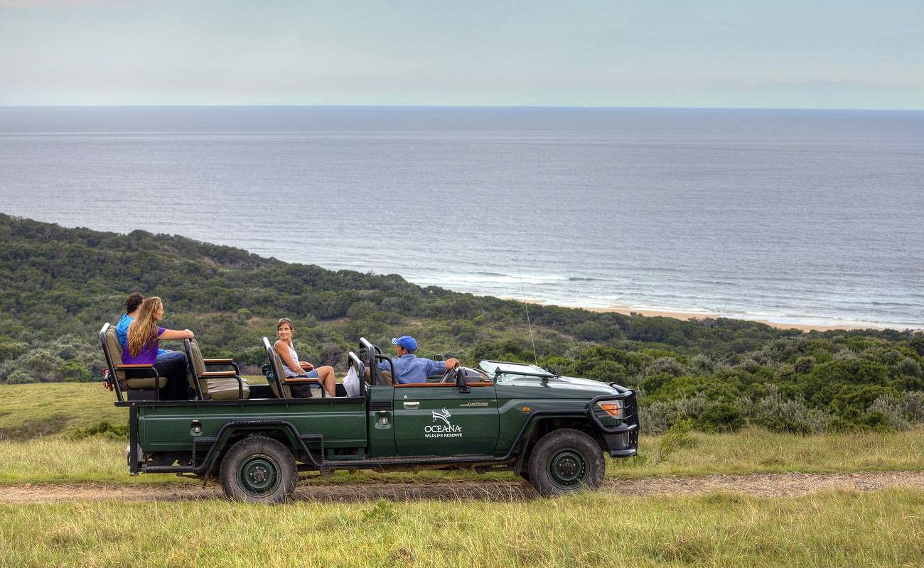 Nature Drive in Oceana in Südafrikas Ostkap