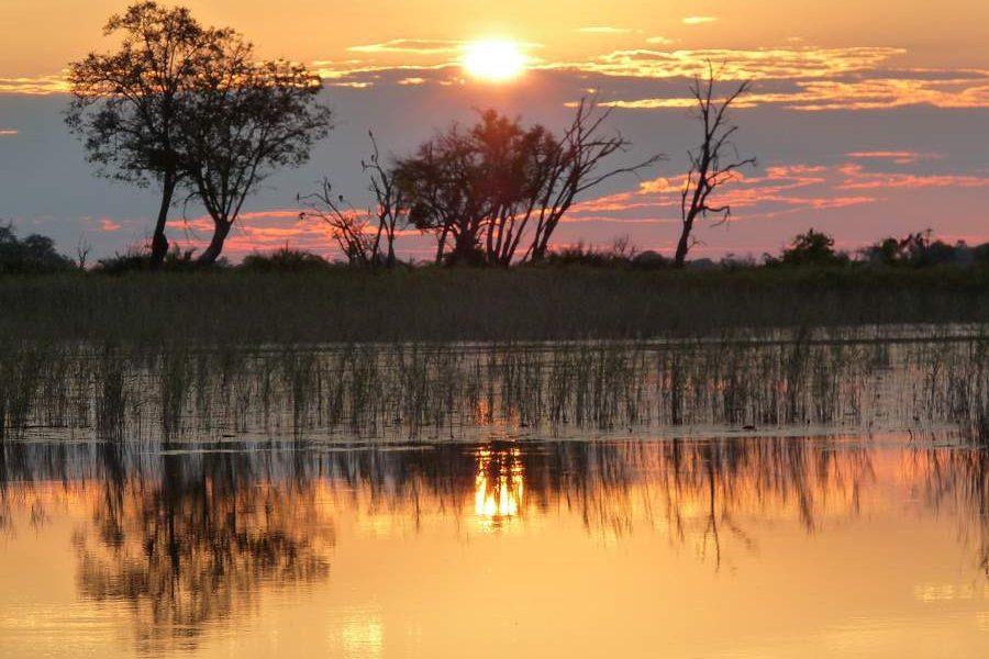 b6c457bfdca5e9 Wann ist die beste Reisezeit für Botswana? | Genuss Touren