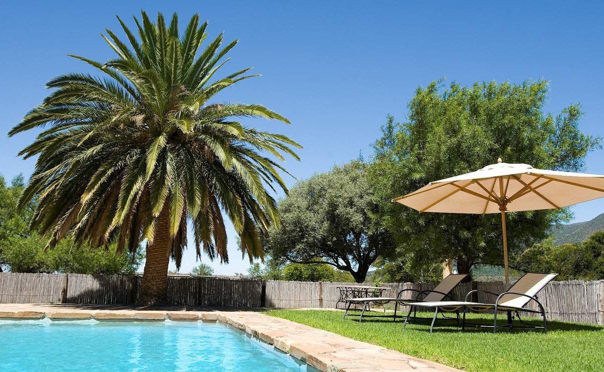 Pool der Samara Karoo Lodge Südafrika